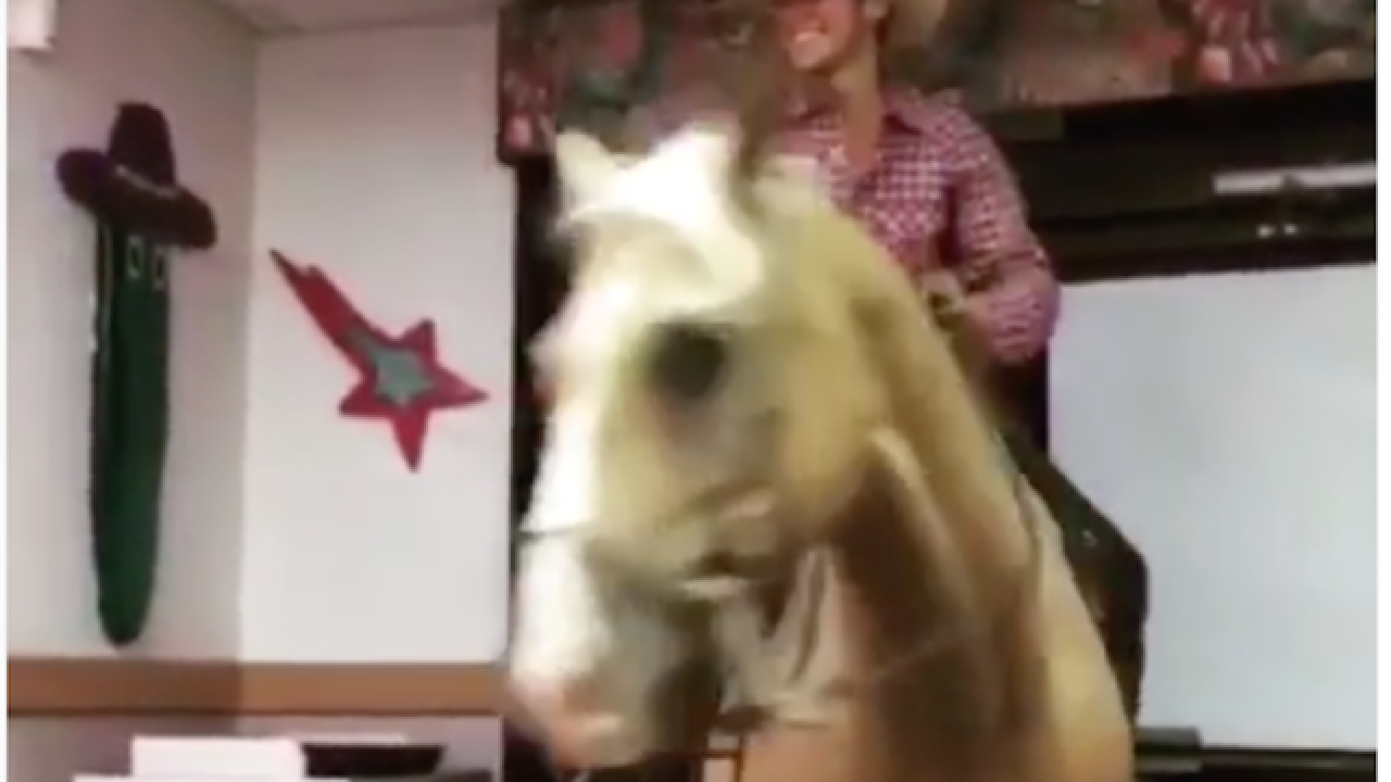 Hey now! Man rides horse into Taco Bell