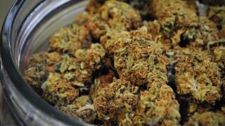 Marijuana (cannabis) in a jar