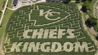 Chiefs Kingdom Corn Maze