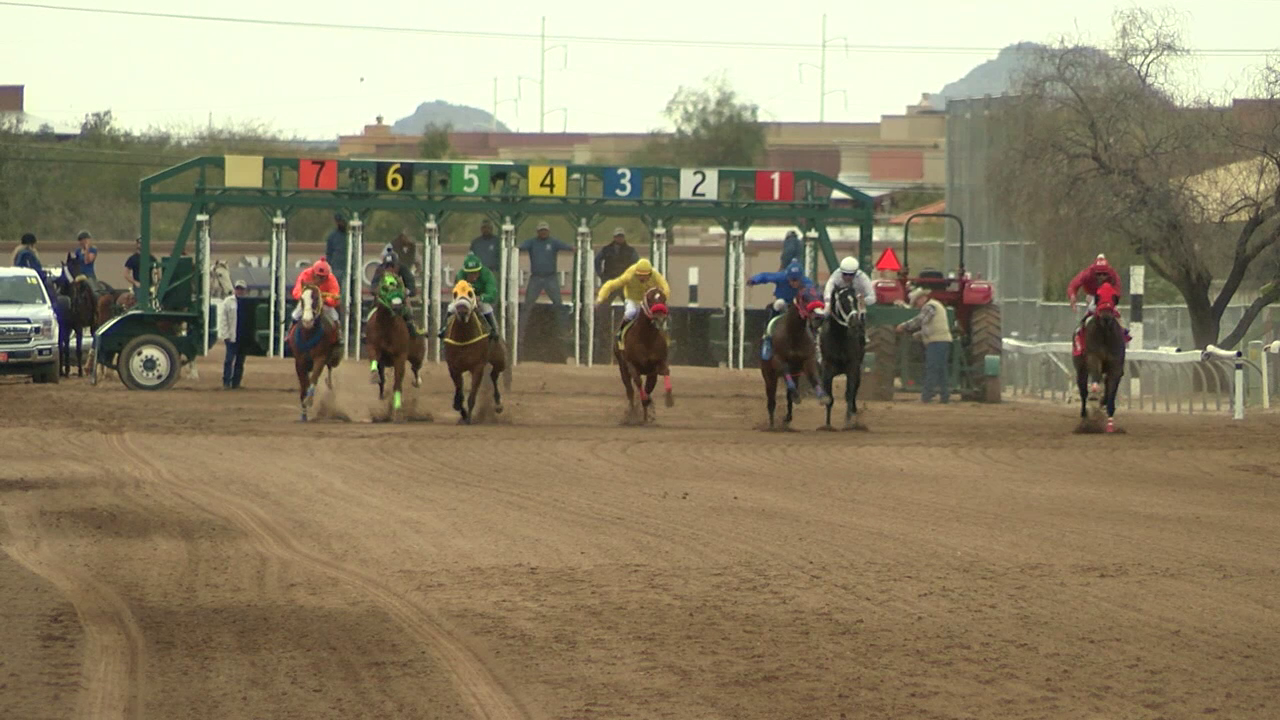 Rillito Racetrack.png
