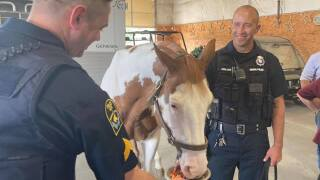 The Omaha Police Department celebrated the retirement of Mounted Patrol Unit horse Orozco on Friday.