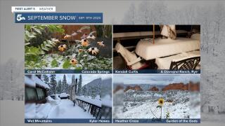 September Snow 4-panel