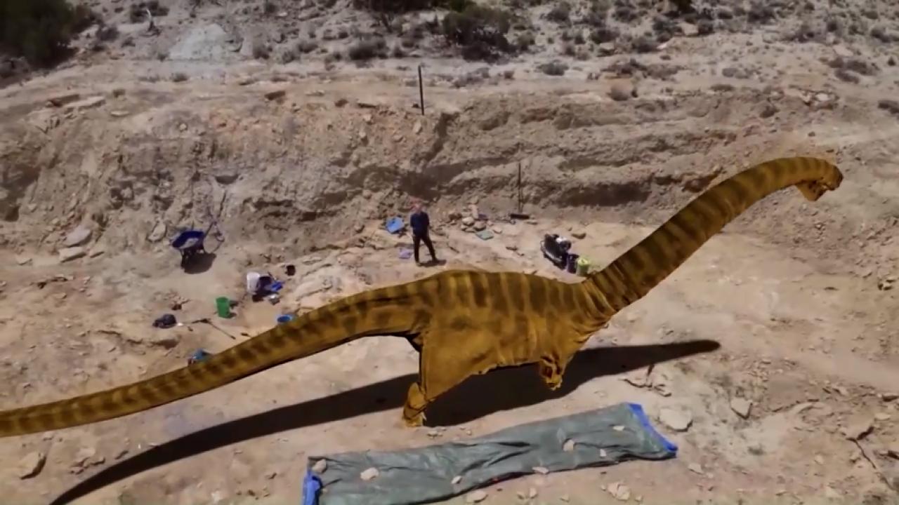 Wyoming Dino Dig