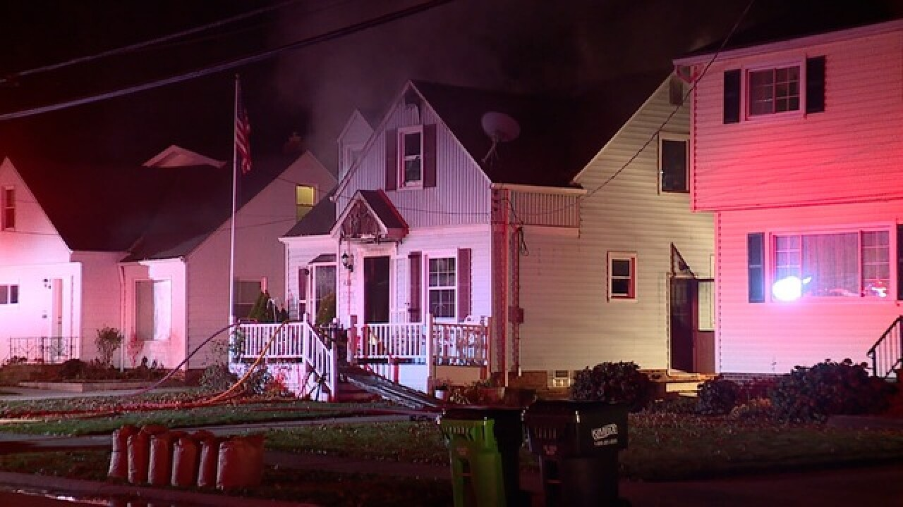 Elderly man, his dog die in Willowick fire