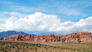 Red Rock Canyon accepting applications for artist-in-residence