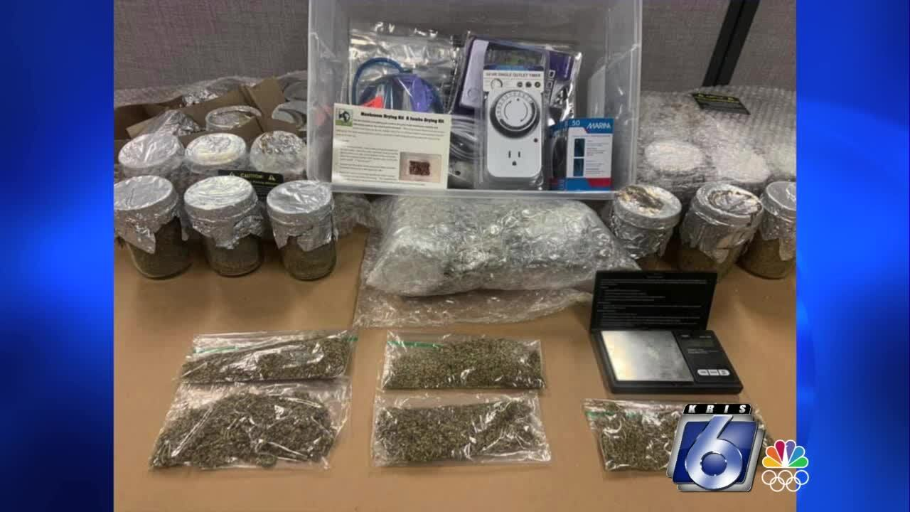 Drug paraphernalia uncovered after Sinton search warrant executed