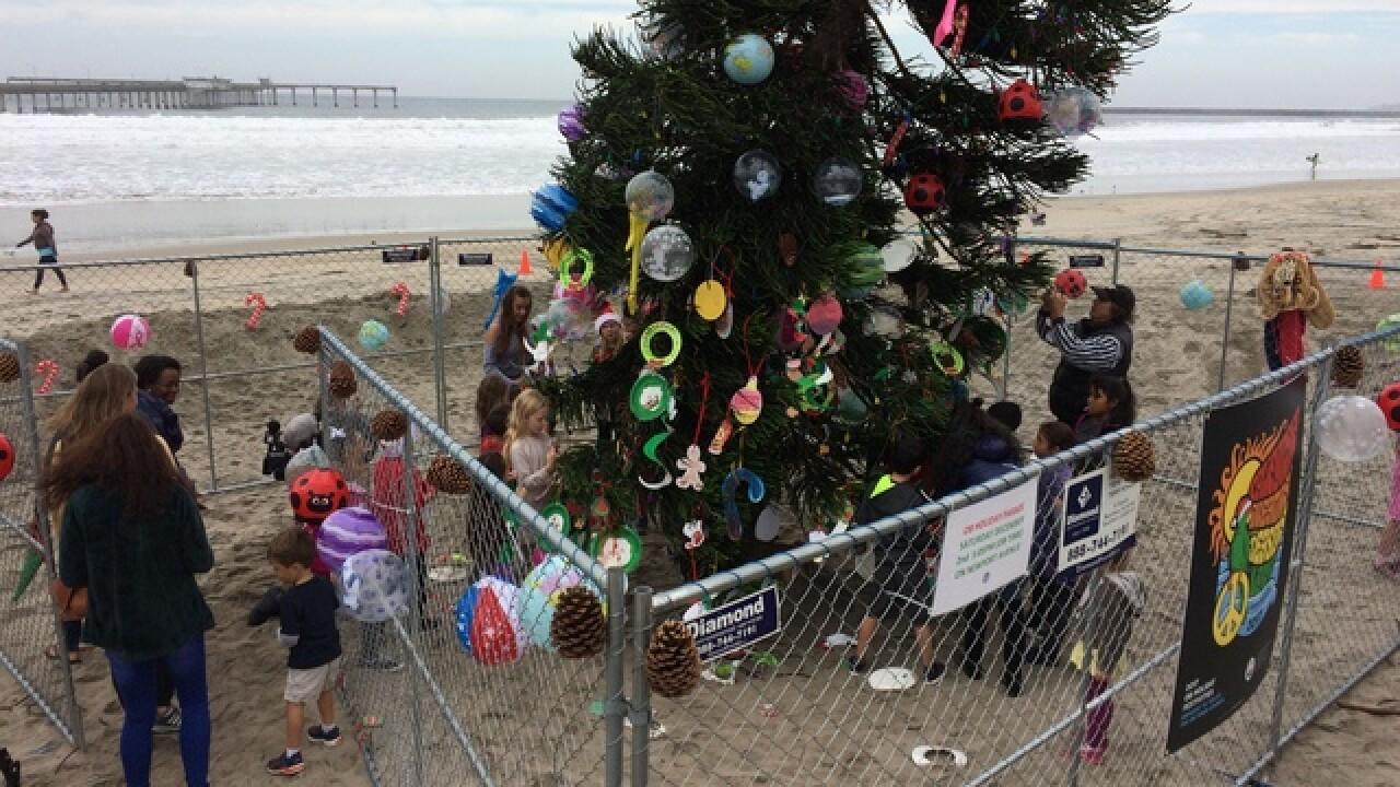 Ocean Beach tree creates holiday centerpiece around city\'s uniqueness