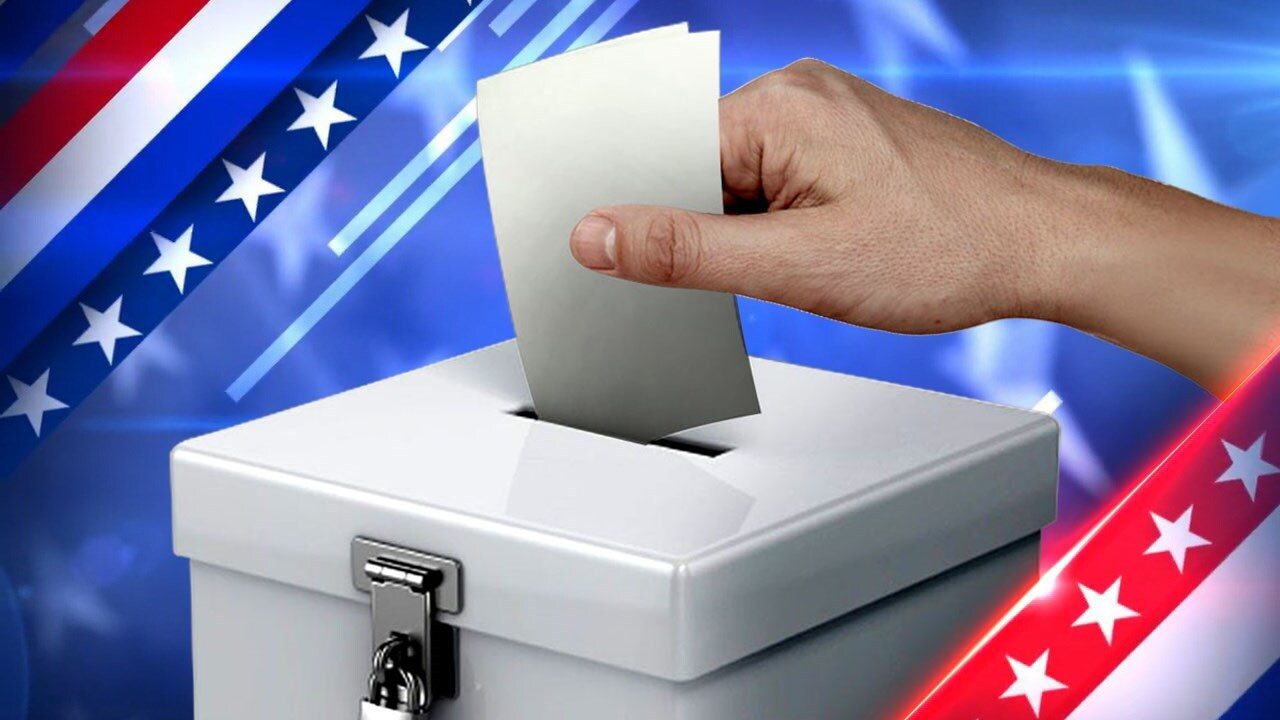 Democrats file petitions to appear on additional lines in Seneca County races