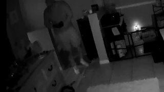 'Broward Sheriff's Office. Is anyone home?' burglar announces