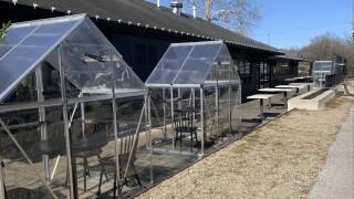 greenhousespublicgreens.jpg