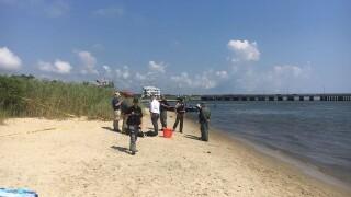 Bones found in barrel on Ocean City beach belonged to an animal