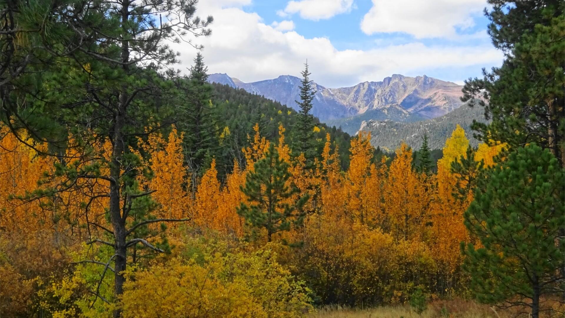 1Pikes Peak Highway Linda Michel.jpg