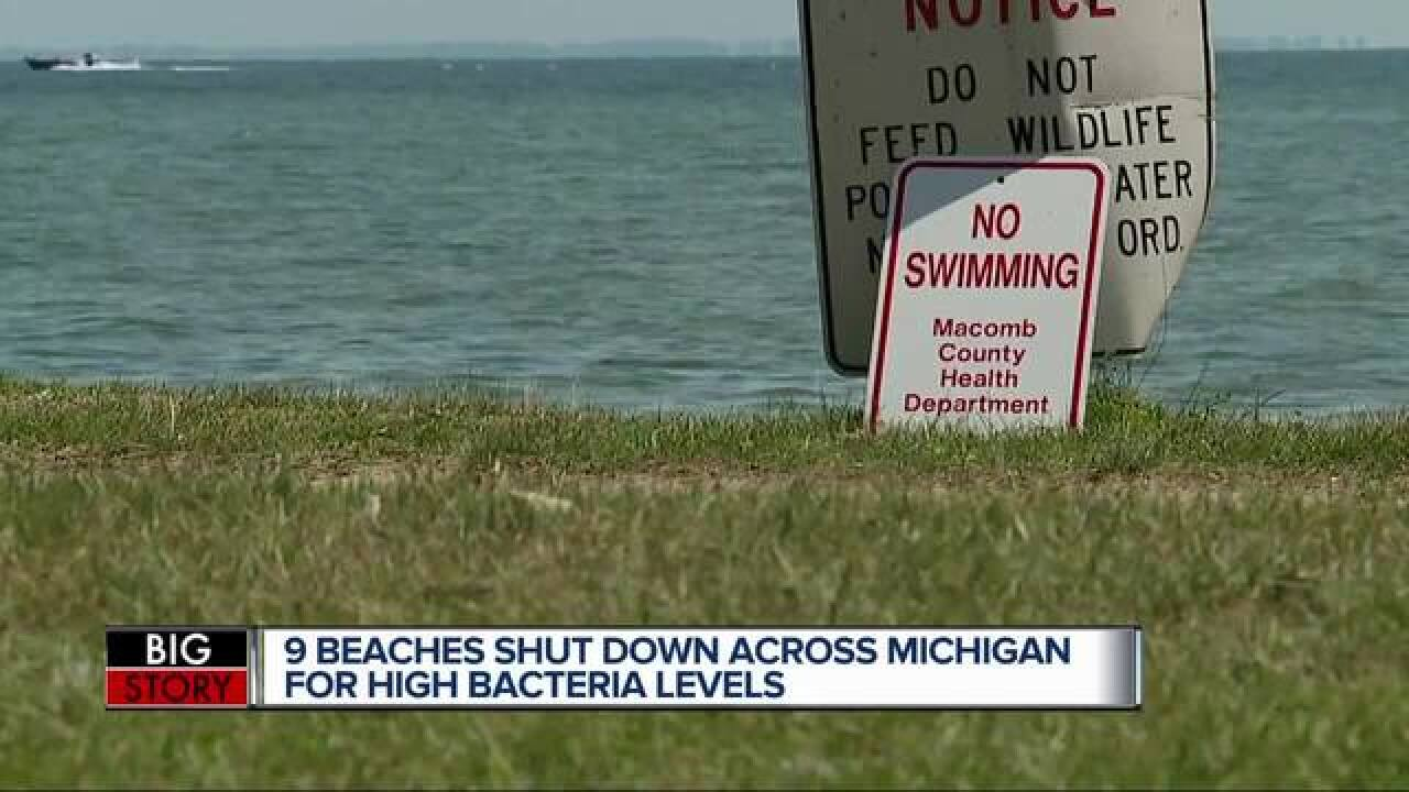 Beach closures in Michigan become 'new norm' thanks to high