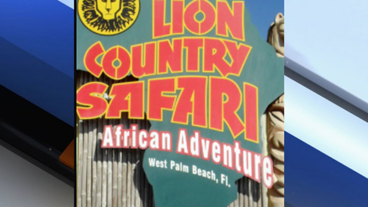 Lion Country Safari could soon be sold