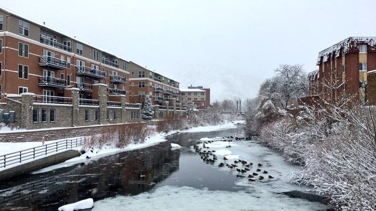 GALLERY: Photos from Colorado's Sunday snowstorm