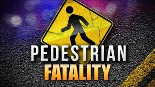 Fatal pedestrian crash
