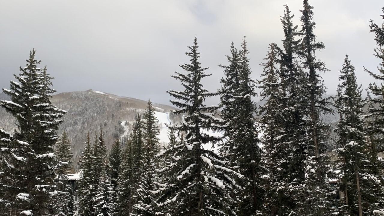 Fresh snow at Vail Ski Resort