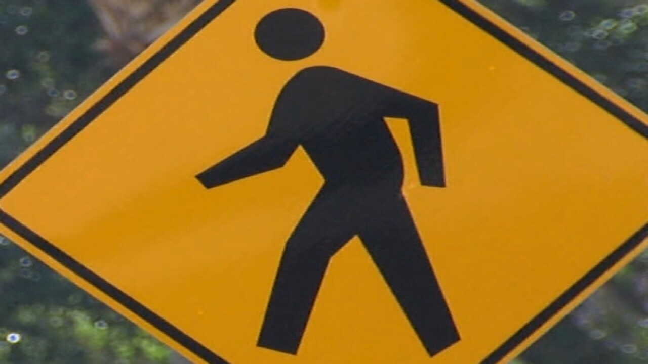 South Tampa neighborhood gets new crosswalk