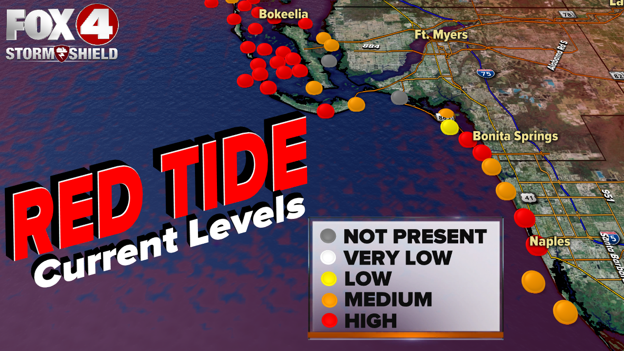 Red tide levels 11-22-19.png