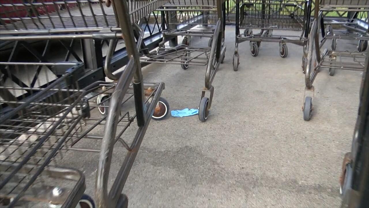 glove carts.jpg