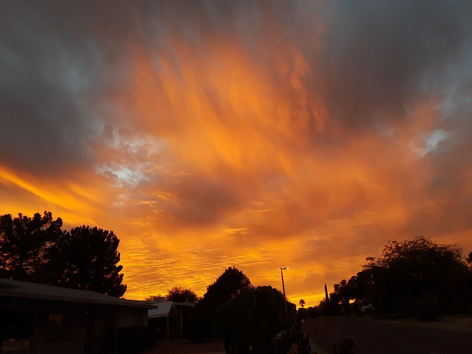 SUNSET By Vivienne Castillo.jpeg