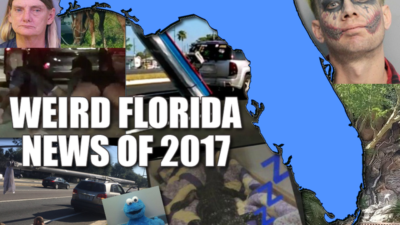 Florida stories that made us laugh, cry or say oh my! The weirdest news of 2017