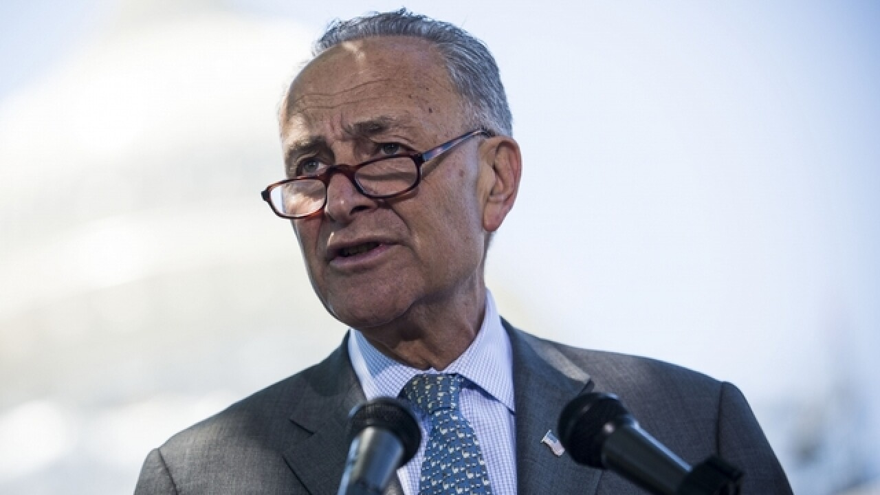 Schumer praises DOJ decision to not defend Trump immigration order