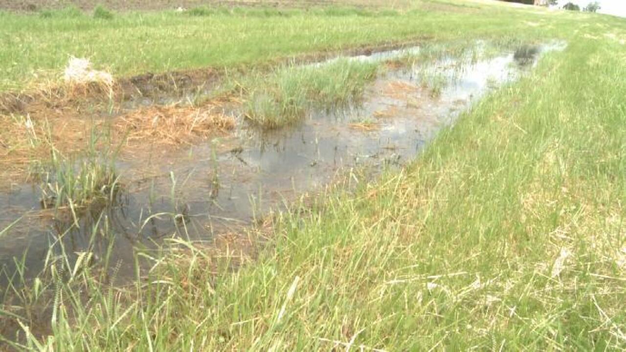Heavy rains affecting farmers in Michigan