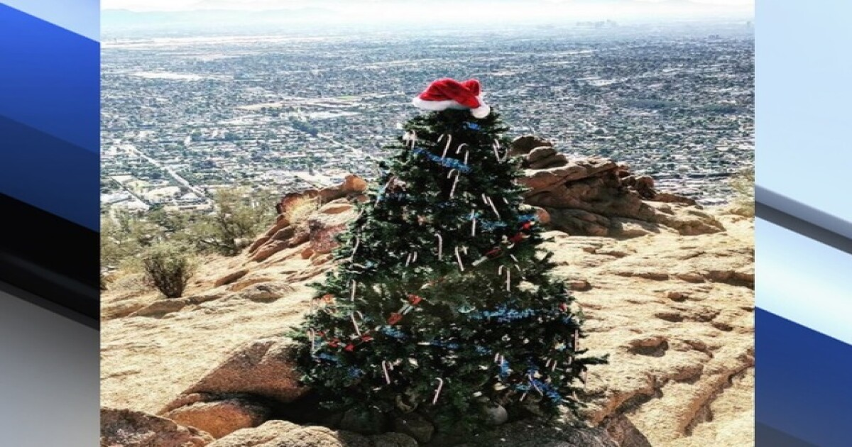The Story Behind The Christmas Tree On Camelback