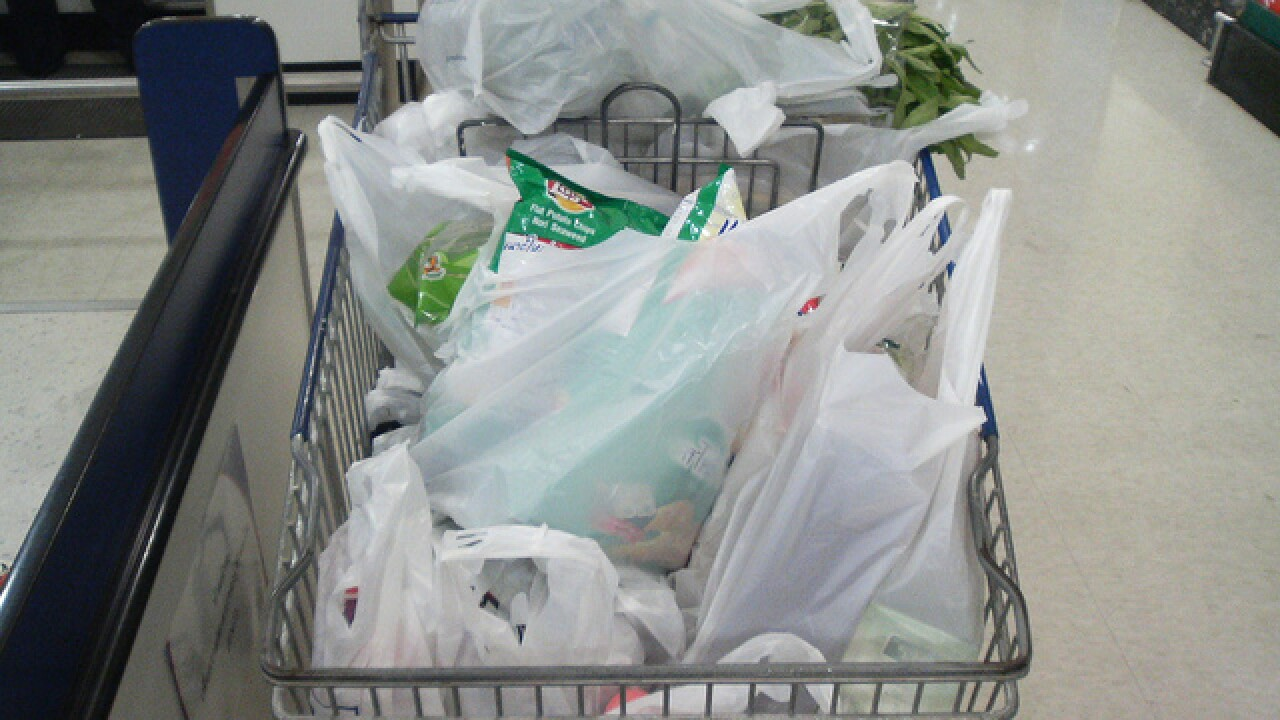 Mayor Stothert open to the idea of plastic bag ban