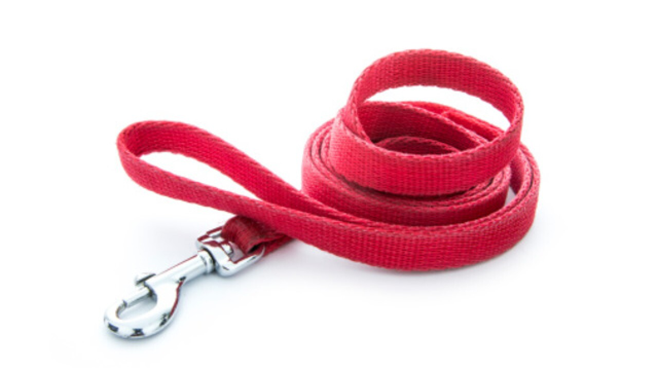 Man charged after using dog leash to lead wife through fair