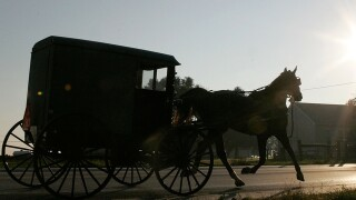 Six thrown from Amish buggy in accident involving box truck