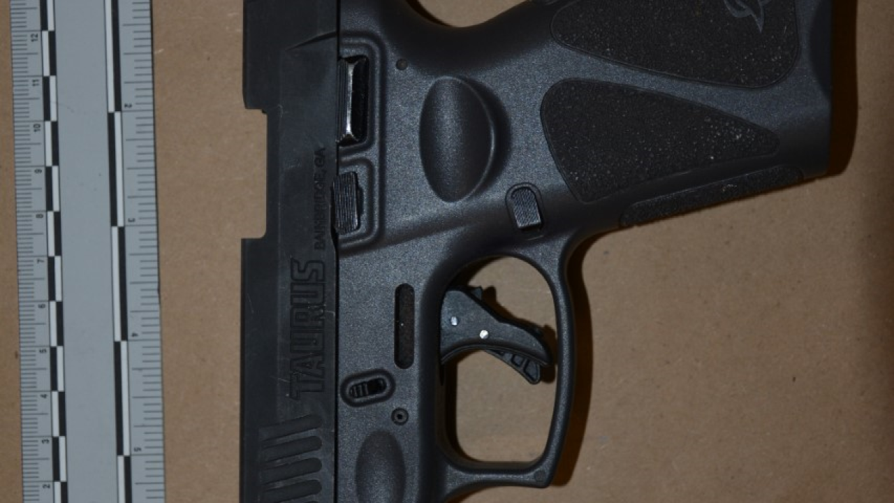 firearms 2.png