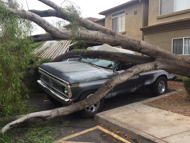IMAGES: Monsoon 2017 hits the Valley