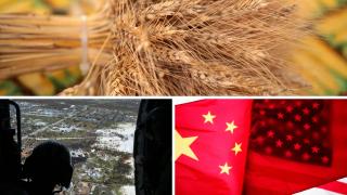 Wheat, Hurricane Dorian, US China Trade War