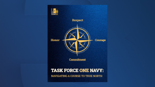 Task Force One Navy