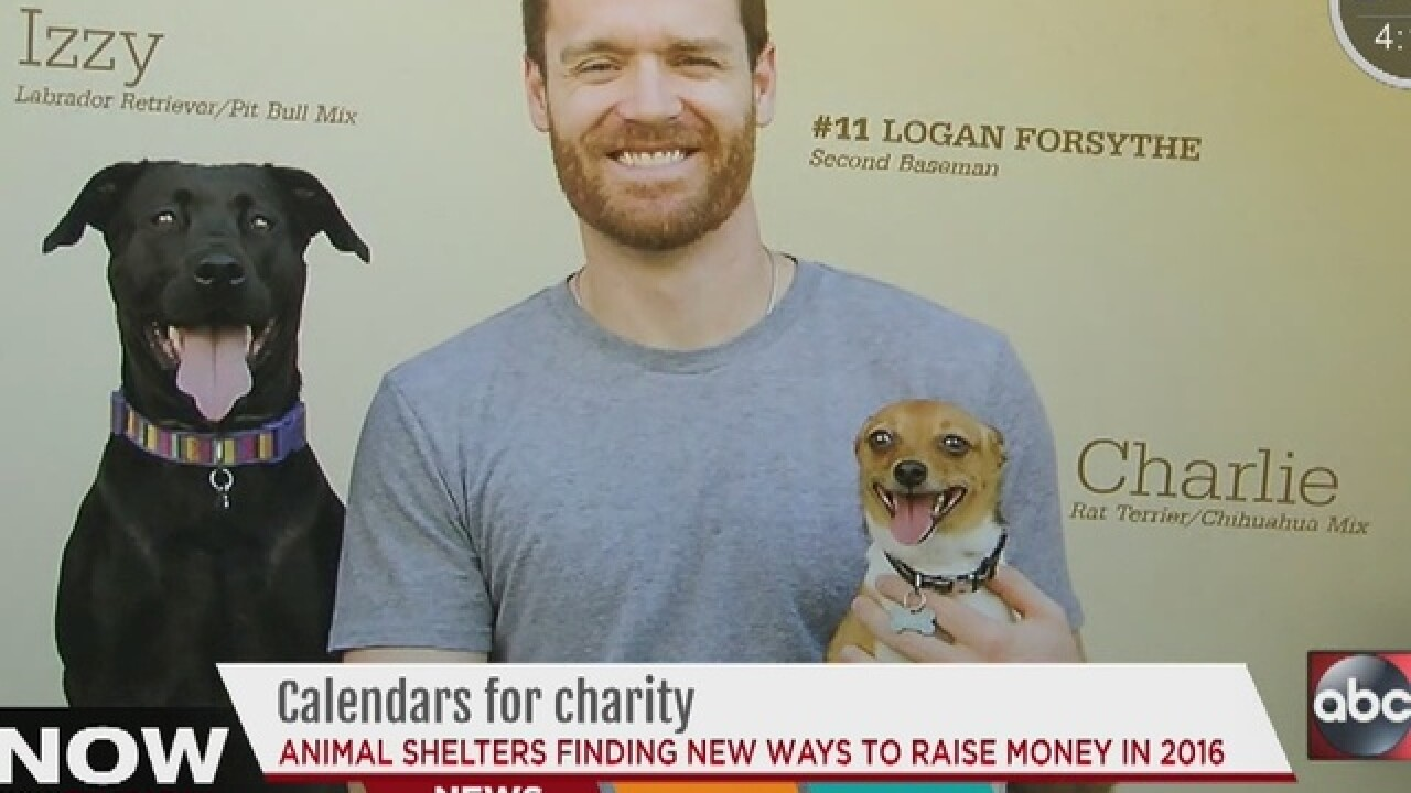 2016 calendars raise money for homeless animals