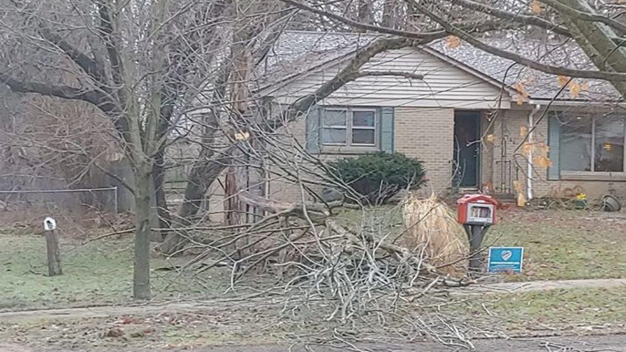 Downed Branches in Cedar Springs - Courtesy Katie McDonald via Facebook.jpg