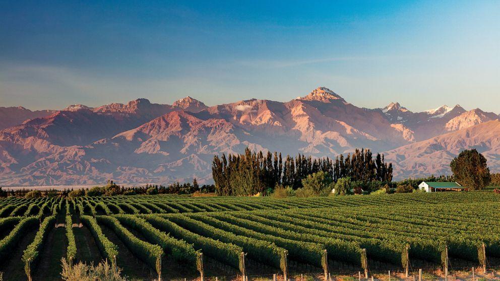 Uco valley.jpg