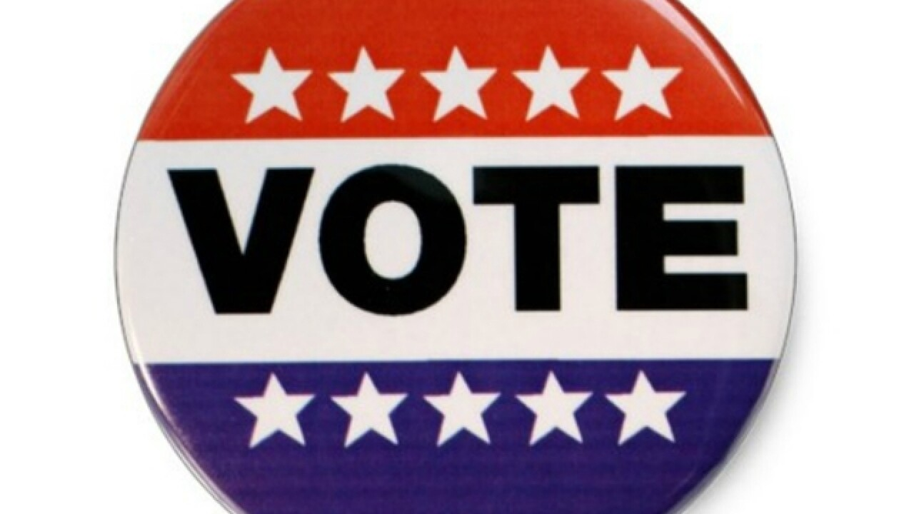 Everything to know about early voting in the Florida primary in DeSoto/Hardee/Highlands Counties