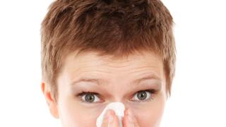 allergies-allergy-cold-41284.jpg