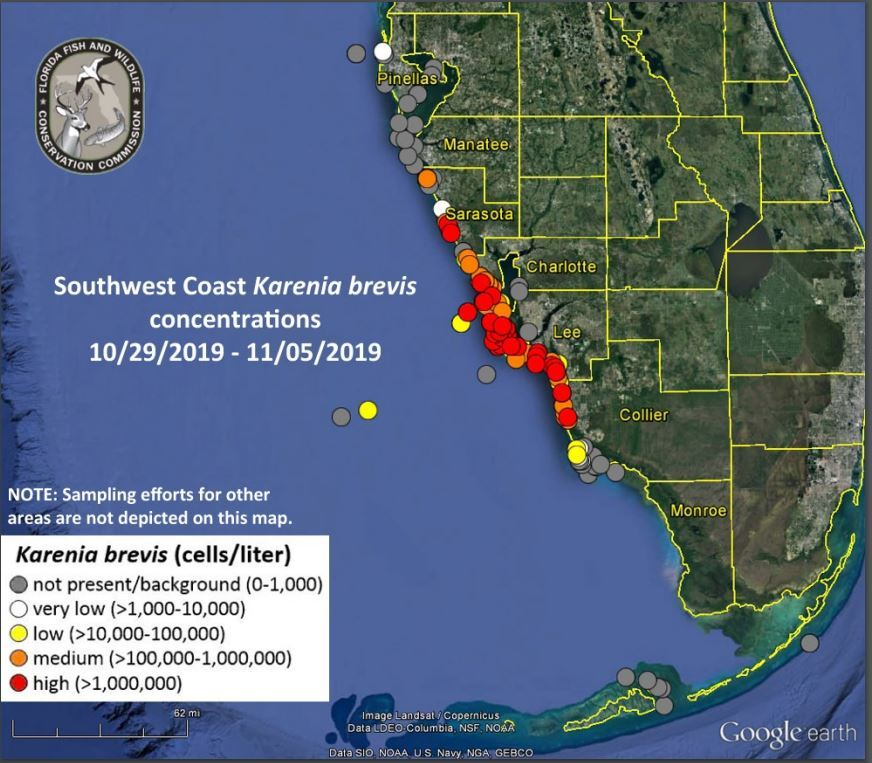 red tide map Nov. 6 2019.JPG