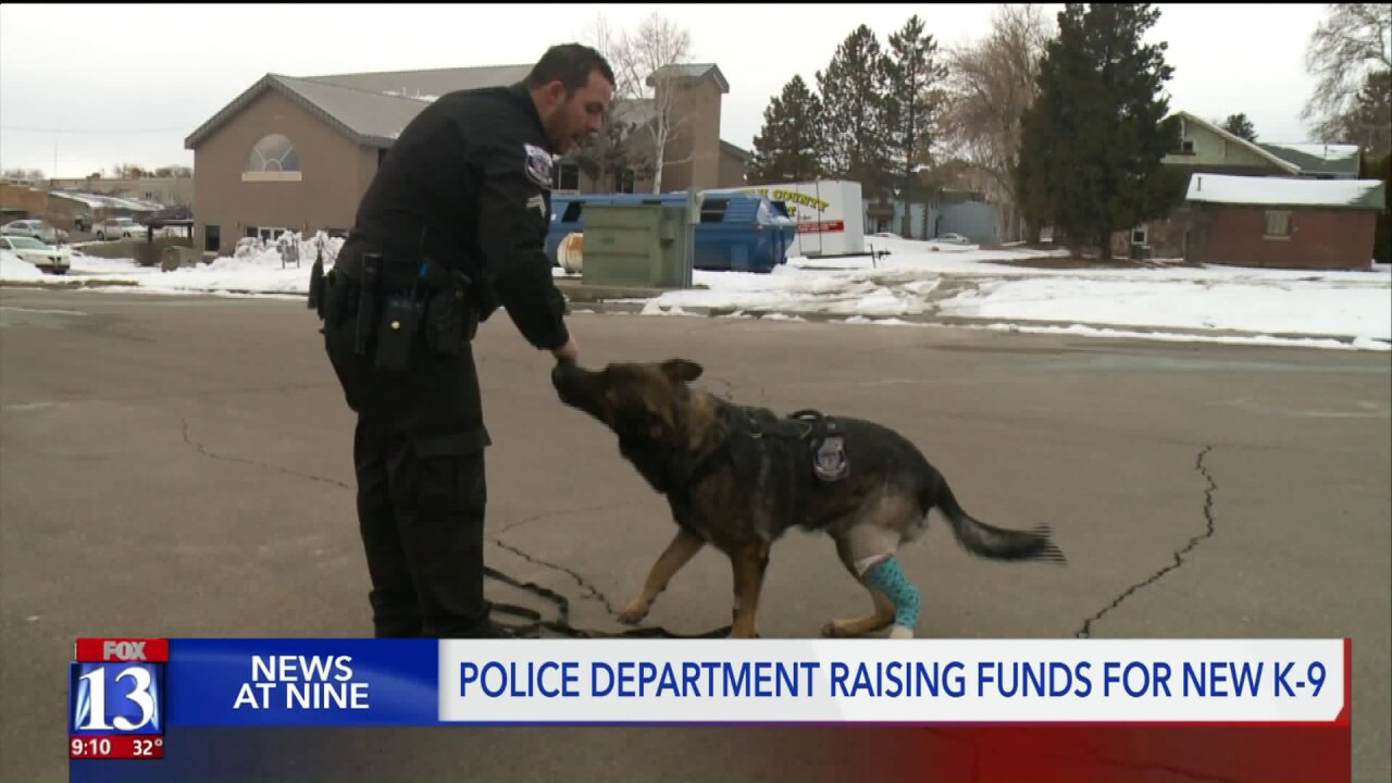 Utah police department raising money for new K-9, after old four-legged officer needs amputation