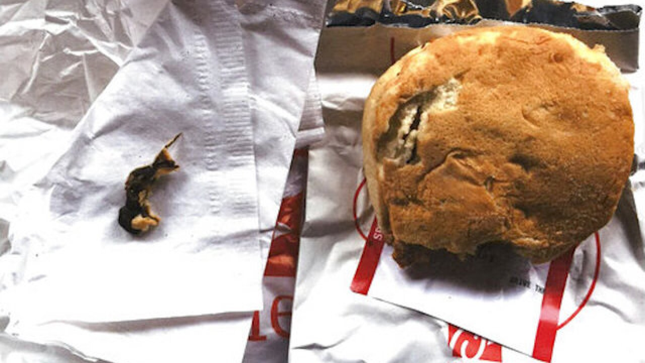 Woman found a rodent in her Chick-fil-A sandwich, lawsuit says