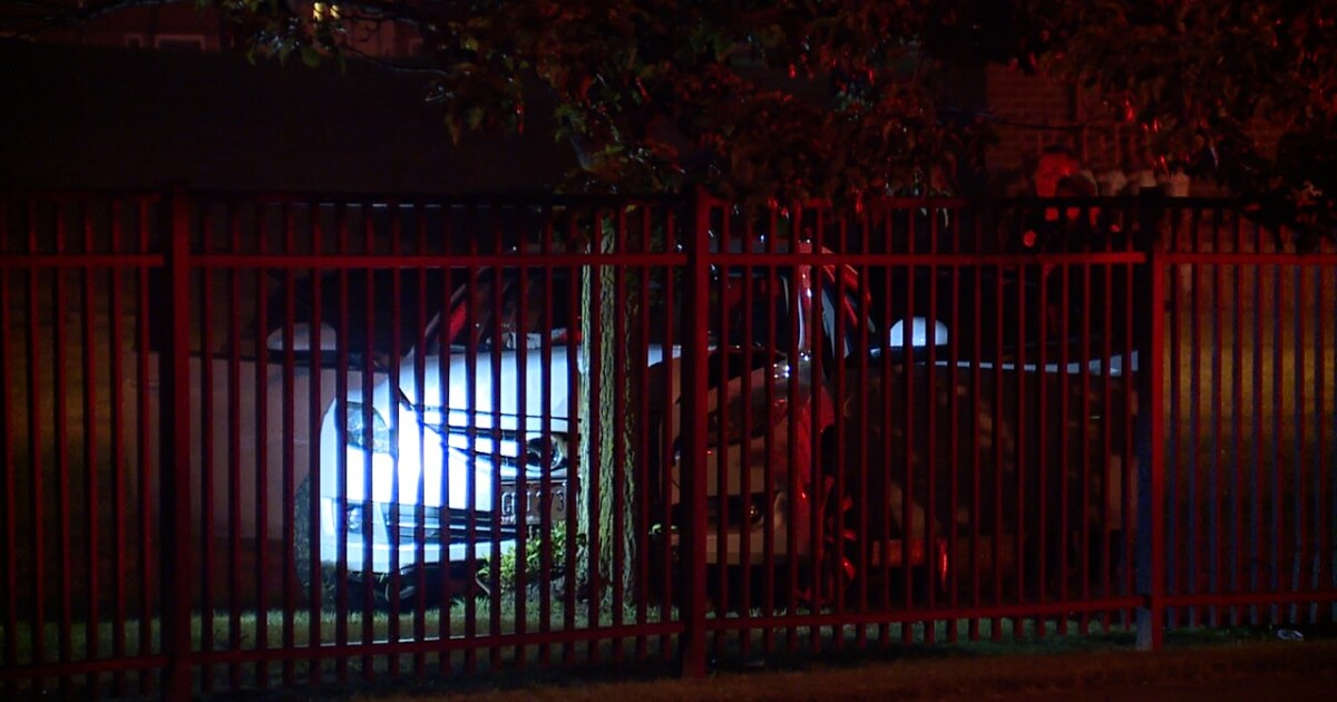 Two people in custody following carjacking in Cleveland