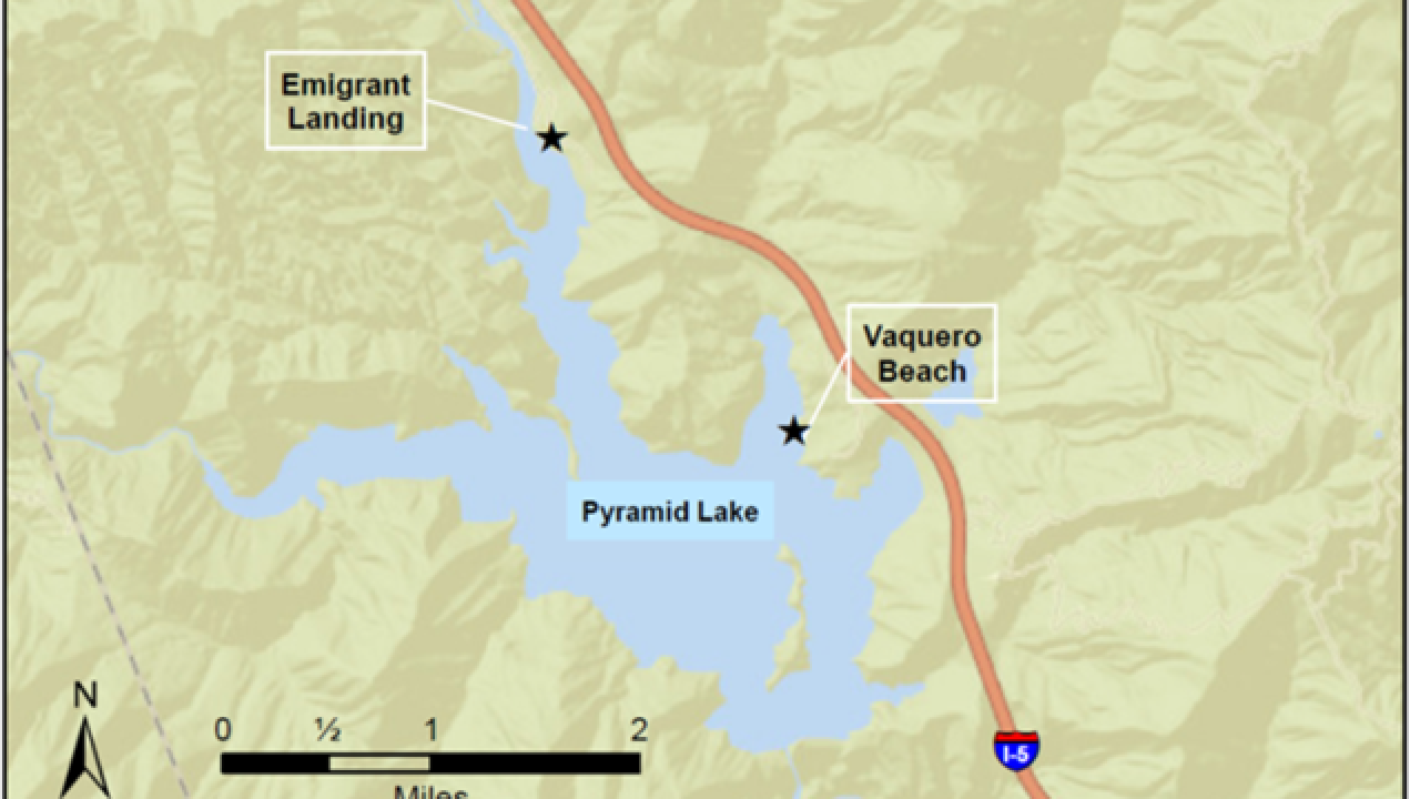 """Danger"" levels of algal bloom at Pyramid Lake"