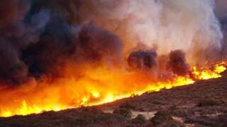 California lawmakers OK multi-billion dollar wildfire bill