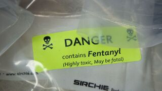 Pentagon, DHS considering designating fentanyl a weapon of mass destruction, memo says
