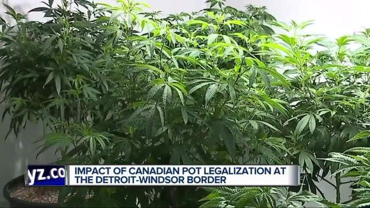 Canadian pot legalization risks U.S. ban