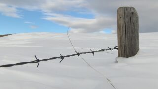 Montana Ag Network: Agricultural benefits of the snow and cold